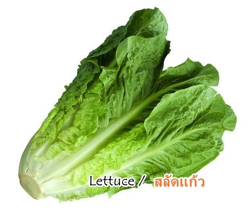 ผักกาดแก้ว Lettuce