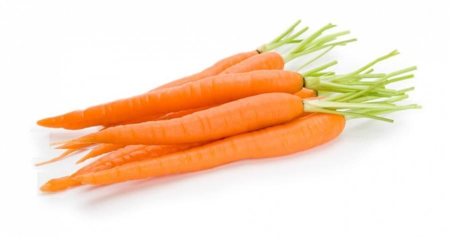 เบบี้แครอท Baby Carrot