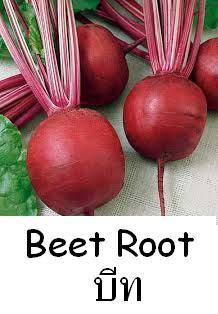 หัวบีท (พันธุ์ดีทรอย์) Beet Root