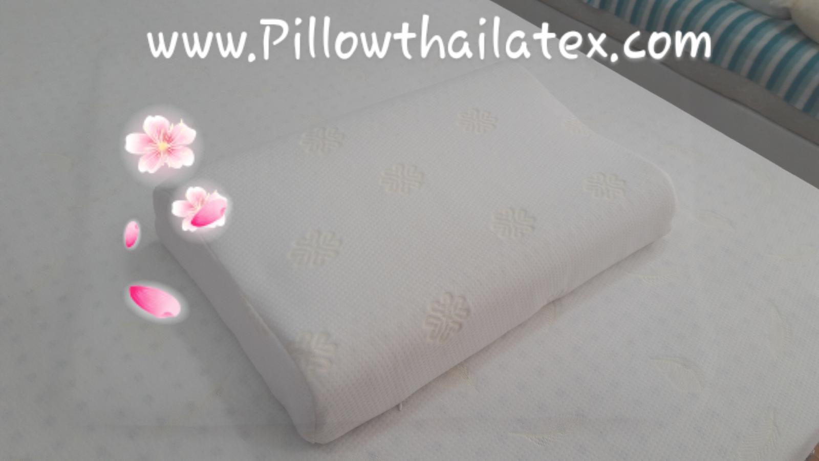 หมอนยางพารา รุ่นคอนทัวร์เรียบ Contour Big Pillow