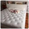 ที่นอนยางพาราแท้เพื่อสุขภาพเกรด A รุ่น Excellent (E) ผ้าควิลท์ รุ่น 5 King(5X180X200) 6 ฟุต หนา 5 cm. /2นิ้ว (18 Kg.)