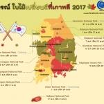 มาแล้ว! พยากรณ์ ใบไม้เปลี่ยนสีที่เกาหลี ประจำปี 2017