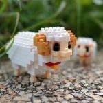 Mother Sheep & Baby Lamb