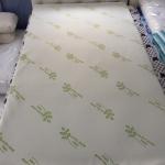 ที่นอนยางพารา รุ่น 2.5 Single (2.5X100X200) 3.5 ฟุต หนา 2.5 cm. /1นิ้ว