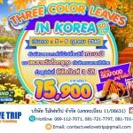 KR24_THREE COLOR LEAVES IN KOREA 5D3N (01 ตุลาคม - 30 พศจิกายน 2560)