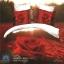 (Pre-order) ชุดผ้าปูที่นอน ปลอกหมอน ปลอกผ้าห่ม ผ้าคลุมเตียง ผ้าฝ้ายพิมพ์ 3D รูปกุหลาบแดง สีแดง thumbnail 1